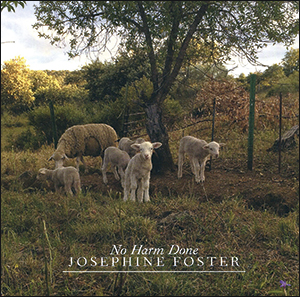 Josephine Foster | No Harm Done